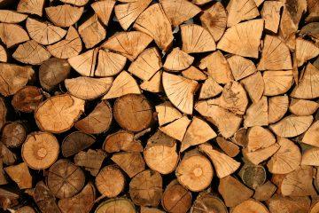 Aandeel hernieuwbare energie groeit dankzij biomassa