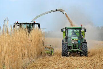Biomassa volgens stikstofadvies Remkes niet CO2-neutraal